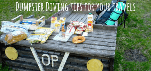 Dumpster Diving tips for your travels