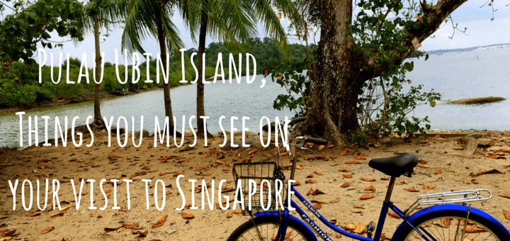Pulau Ubin Island, Things you must see on your visit to Singapore