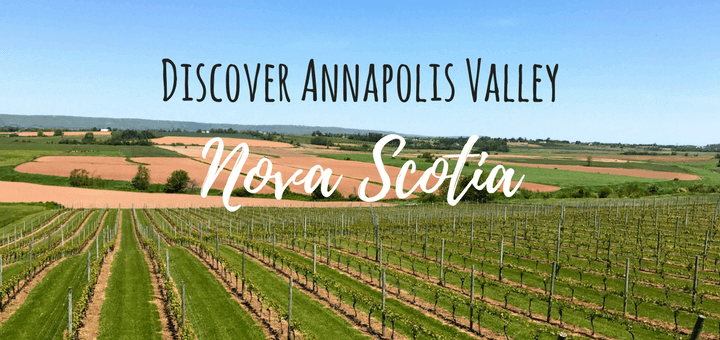 Discover Annapolis Valley: Wine, spirits and Craft beer in Nova Scotia, Canada