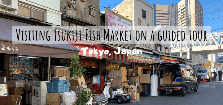 Visiting Tsukiji Fish Market on a guided tour in Tokyo, Japan